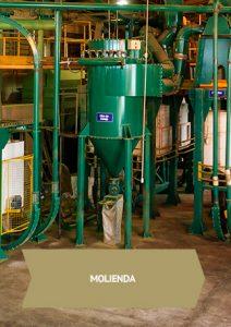 proceso de molienda de yerba mate