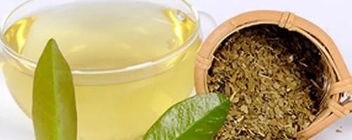 yerba mate antioxidante